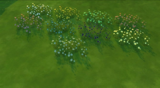 Daisies pansies recolored by Fitz71000 at Mod The Sims image 1063 670x368 Sims 4 Updates