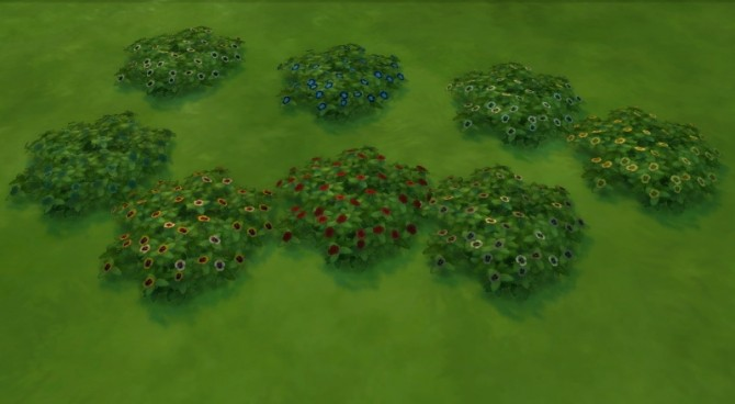 Daisies pansies recolored by Fitz71000 at Mod The Sims image 1073 670x368 Sims 4 Updates