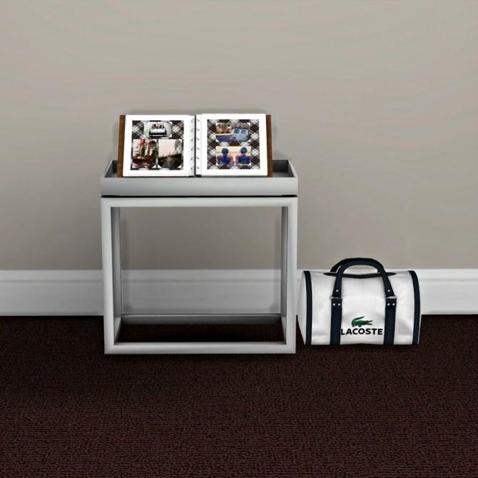 Sims 4 Bag and Photo Album at Leo Sims