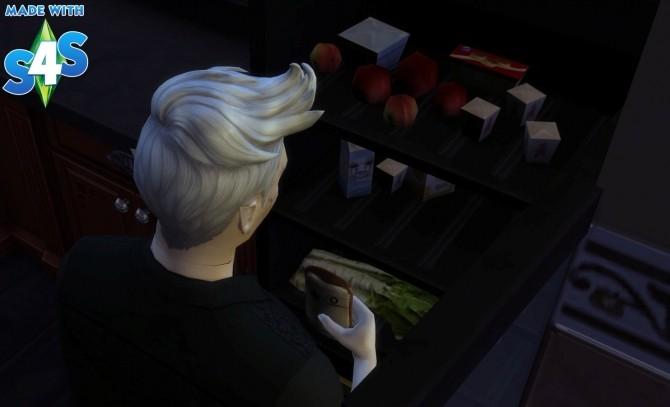 Blood bag O Negative and Emergency cooler for Vampire by Séri at Mod The Sims image 645 670x407 Sims 4 Updates