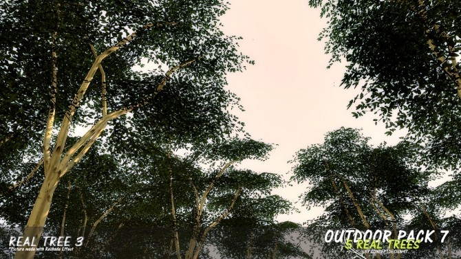 Outdoor Pack 7   5 Real Trees at ConceptDesign97 image 11111 670x377 Sims 4 Updates