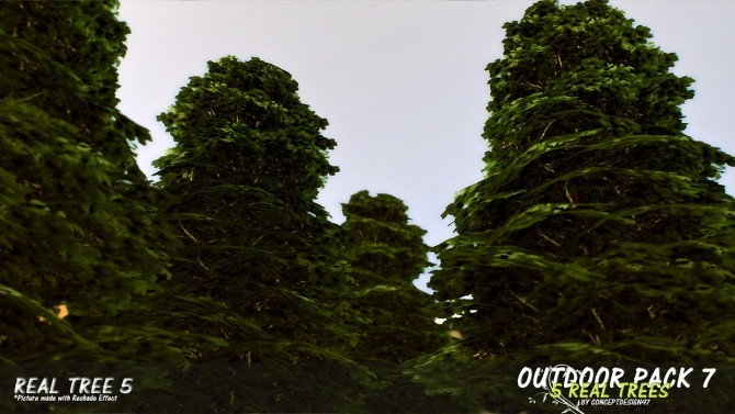 Outdoor Pack 7   5 Real Trees at ConceptDesign97 image 1138 670x377 Sims 4 Updates