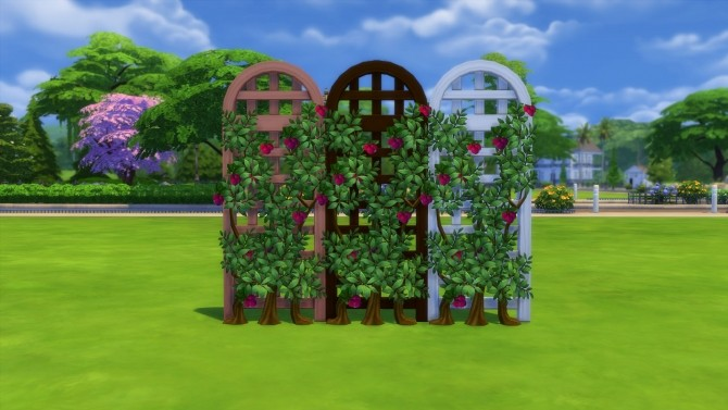 Sims 4 Get Fruity II Peaches, Pears and Plums by Snowhaze at Mod The Sims