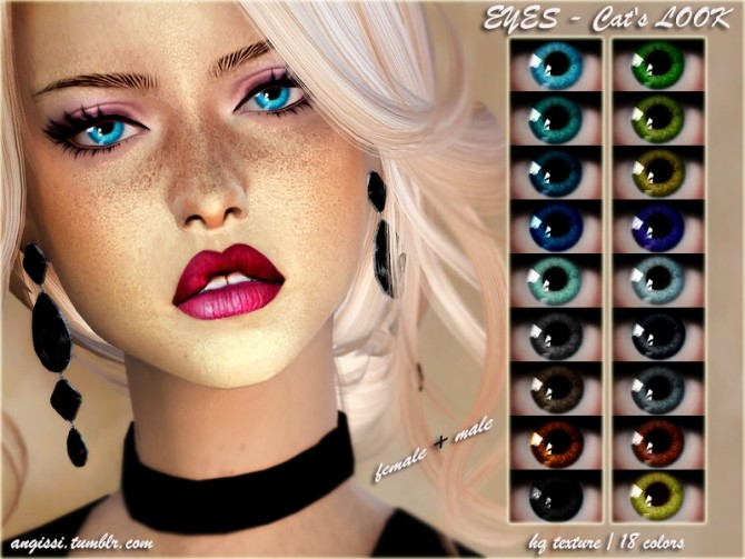 Sims 4 Cat's LOOK eyes at Angissi