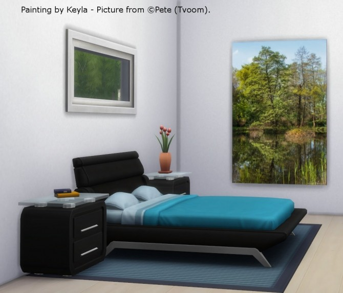 Sims 4 Paintings Pete at Keyla Sims
