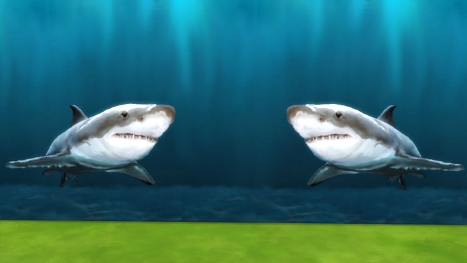 Yipes! Sharks! by Snowhaze at Mod The Sims image 3713 670x377 Sims 4 Updates