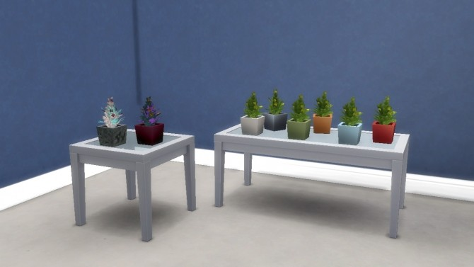 Succulent Plants in Ceramic/Stone Pots by VictorialaRidge at TSR image 8212 670x377 Sims 4 Updates