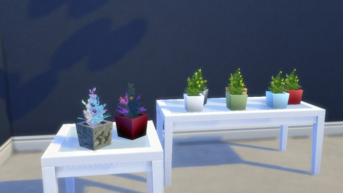 Succulent Plants in Ceramic/Stone Pots by VictorialaRidge at TSR image 8410 670x377 Sims 4 Updates