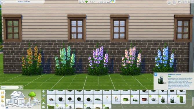 Hollyhocks in new colors by Nuttchi at Mod The Sims image 1112 670x377 Sims 4 Updates