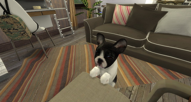 Leo livingroom at Pandasht Productions image 1465 Sims 4 Updates