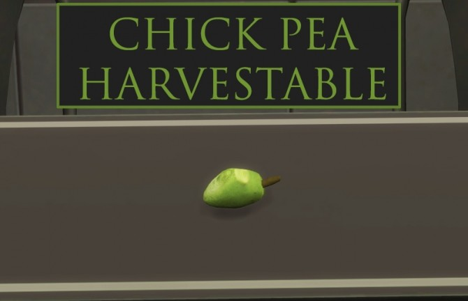 Custom Harvestable ChickPea by icemunmun at Mod The Sims image 1686 670x432 Sims 4 Updates