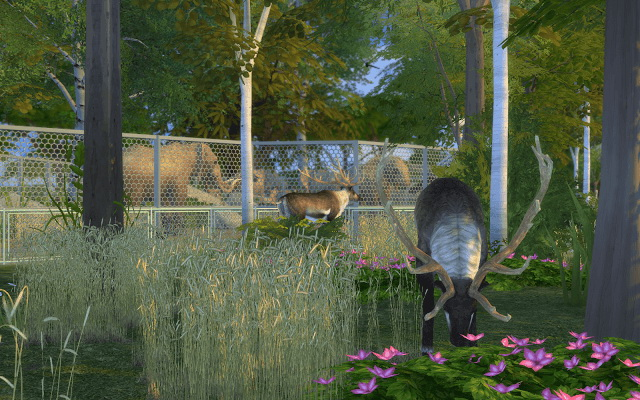 Sims 4 Zoo La Belle vue at Rabiere Immo Sims