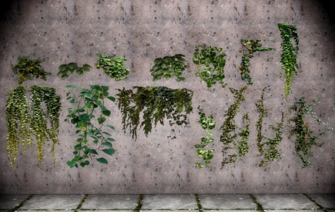 2T4 Yuxis Foliage Plants Remeshed at Daer0n – Sims 4 Designs image 1722 670x424 Sims 4 Updates