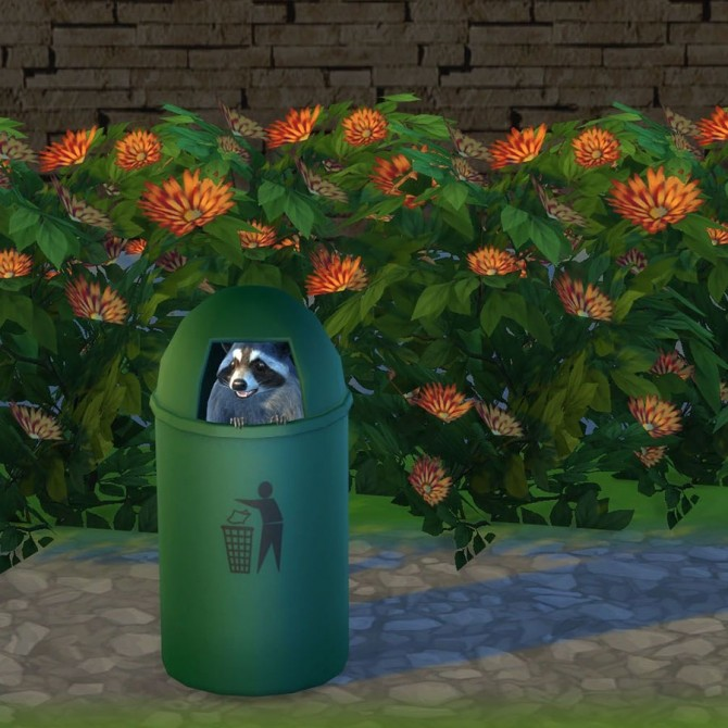 Racoon In The Bin at Leo Sims image 6314 670x670 Sims 4 Updates
