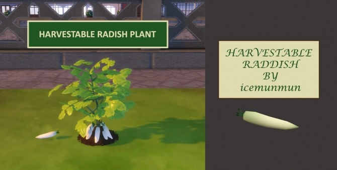 Custom Harvestable Radish/Daikon by icemunmun at Mod The Sims image 931 670x339 Sims 4 Updates