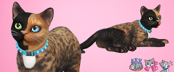 Sims 4 Venus cat by 3lodiie at Les Sims4