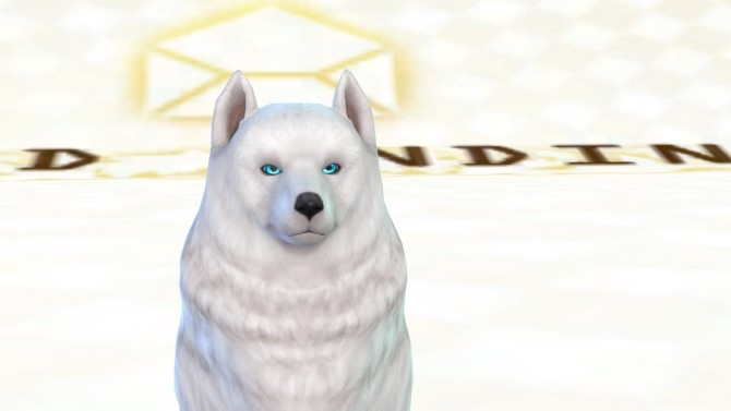 Shadows eyes for cats and dogs by ShadowEatsSkittlez at SimsWorkshop image 1225 670x377 Sims 4 Updates