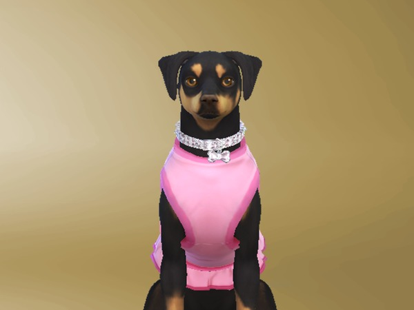 Necklace diamond of dog small by Celeste25 at TSR image 1386 Sims 4 Updates