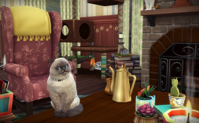 Cats & Dogs House at Frau Engel image 15110 670x416 Sims 4 Updates