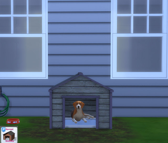 Kennel at Simista image 4051 Sims 4 Updates