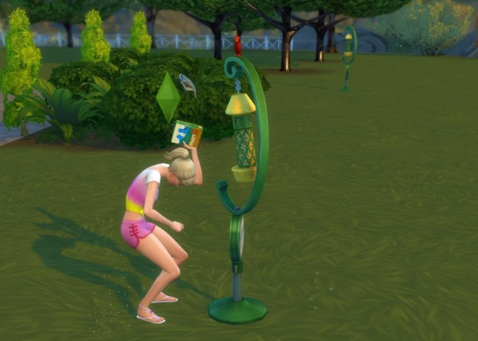 Sims 4 Friendly Birds At The Birdfeeder by cyclelegs at Mod The Sims