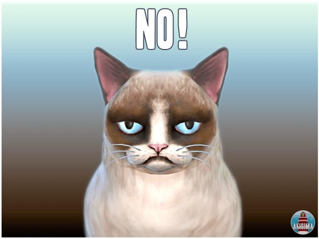 Sims 4 Grumpy Cat by Waterwoman at Akisima