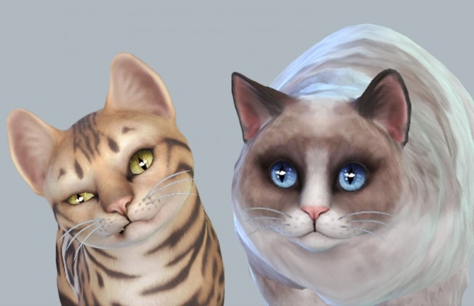 Sims 4 Default Whisper Eyes Cats & Dogs by kellyhb5 at Mod The Sims