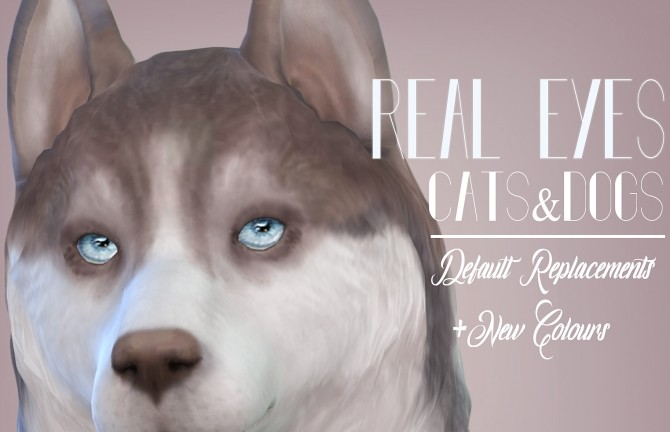 Sims 4 Real Eyes Cats & Dogs by kellyhb5 at Mod The Sims