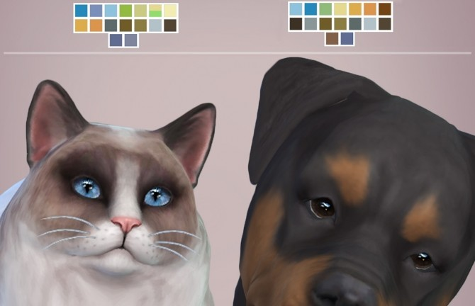 Real Eyes Cats & Dogs by kellyhb5 at Mod The Sims » Sims 4