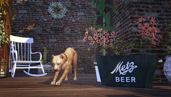 Four legged Life POSEPACK at Solistair image 10120 670x381 Sims 4 Updates