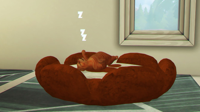 Sims 4 MORE TWO PETS BED by Thiago Mitchell at REDHEADSIMS