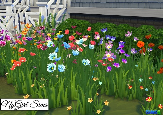 Wildflower Assortment at NyGirl Sims image 1681 670x473 Sims 4 Updates