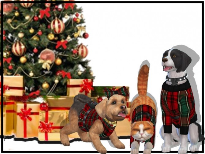 Christmas Pets at NEW Luxurious Sims 4 image 2085 670x503 Sims 4 Updates