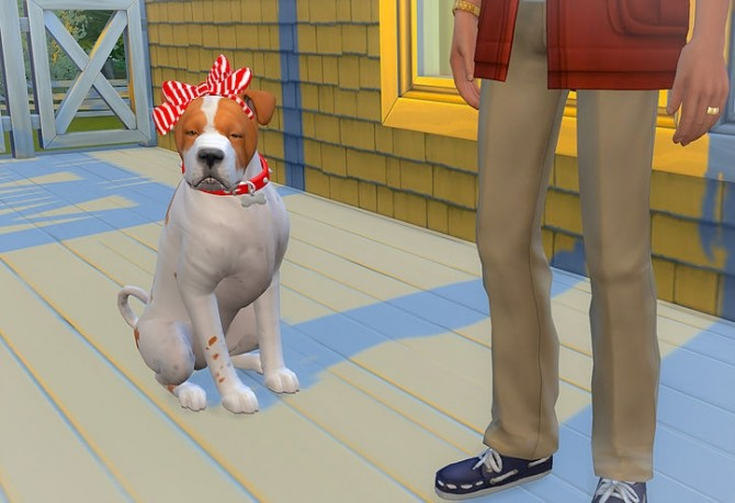 Dog head bow at Studio K Creation image 2141 670x458 Sims 4 Updates