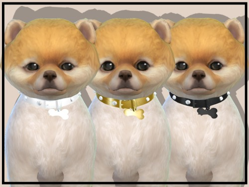LUXURY PET COLLARS at NEW Luxurious Sims 4 image 2164 Sims 4 Updates