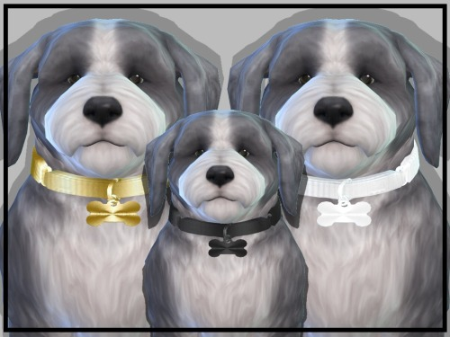 LUXURY PET COLLARS at NEW Luxurious Sims 4 image 2174 Sims 4 Updates
