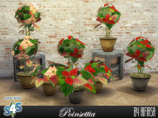 Sims 4 Poinsettia at Aifirsa