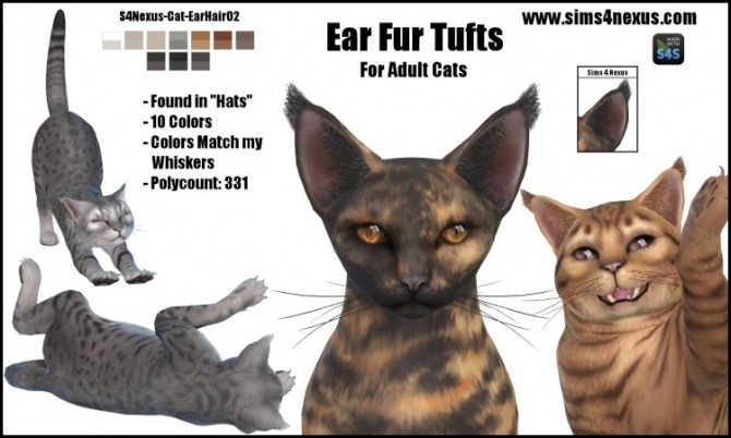 Cat Ear Fur Tufts by SamanthaGump at Sims 4 Nexus image 2363 670x402 Sims 4 Updates