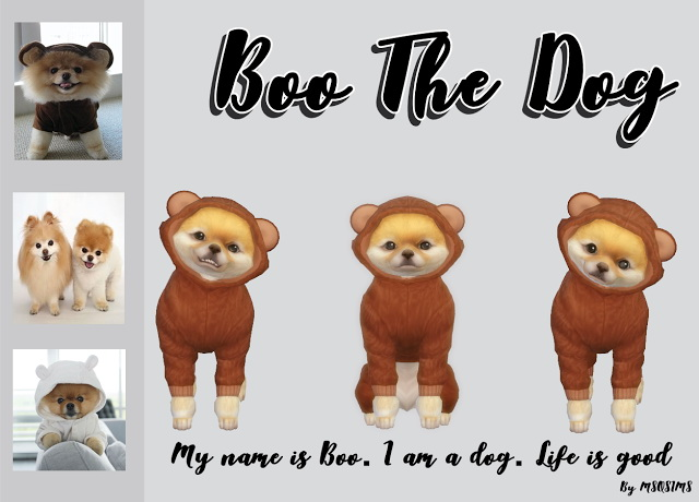 Boo The Dog at MSQ Sims image 4510 Sims 4 Updates