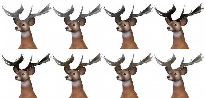 Very Big Antlers by TheKalino at Mod The Sims image 5816 670x318 Sims 4 Updates