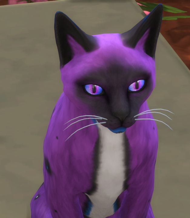 Sims 4 30 non default colors for cats eyes by Valentina Karlova at Mod The Sims