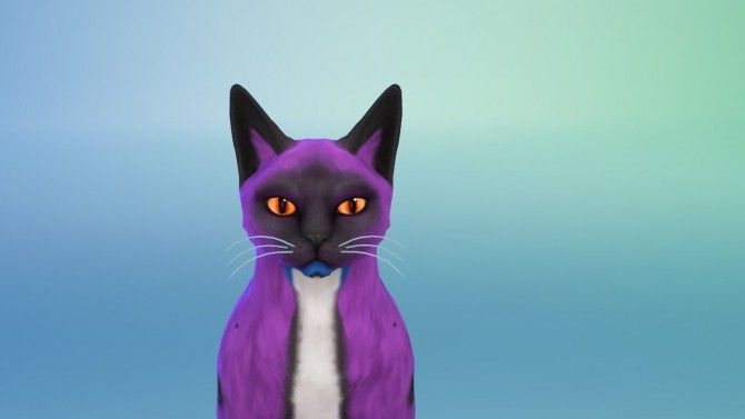 30 non default colors for cats eyes by Valentina Karlova at Mod The Sims image 10816 670x377 Sims 4 Updates