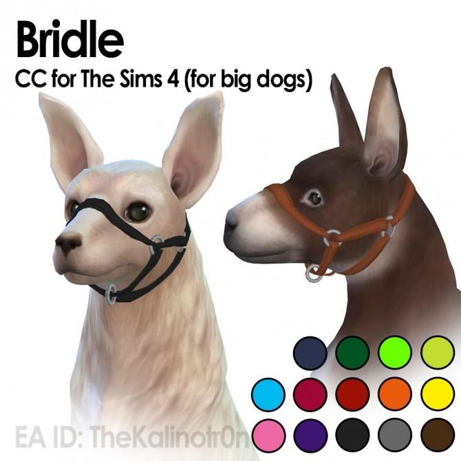 Sims 4 Bridle at Kalino