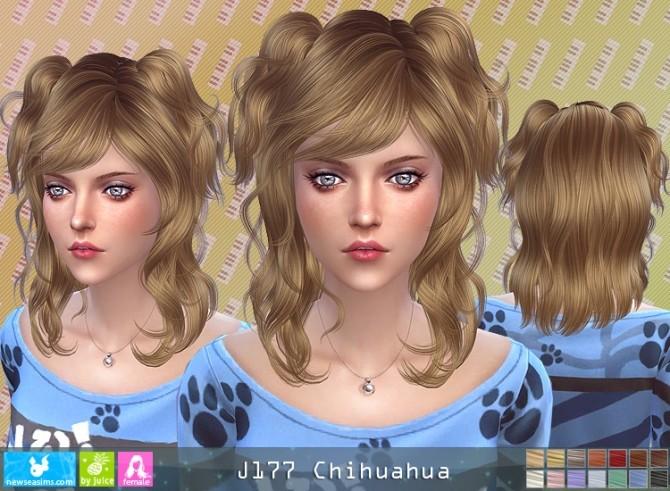 J177 Chihuahua hair (P) at Newsea Sims 4 image 1788 670x491 Sims 4 Updates