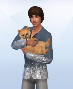 Cute little dog at Dreadan simblr image 2092 Sims 4 Updates