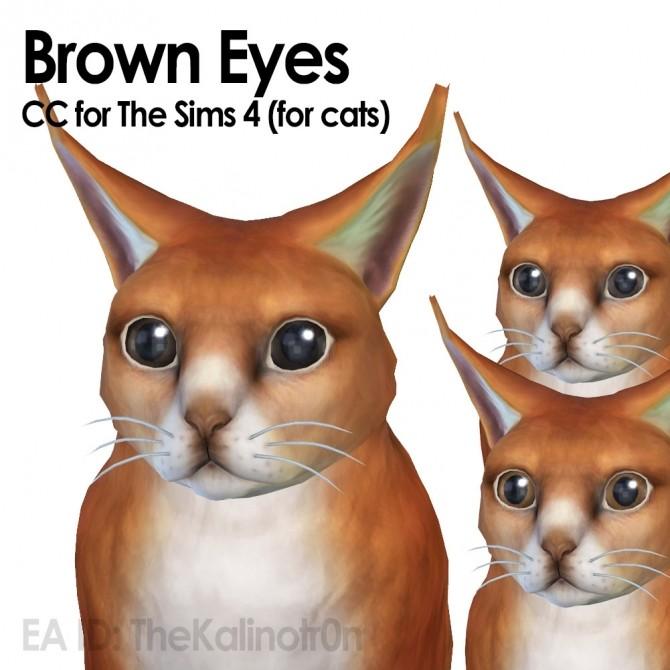 Brown eyes at Kalino image 276 670x670 Sims 4 Updates
