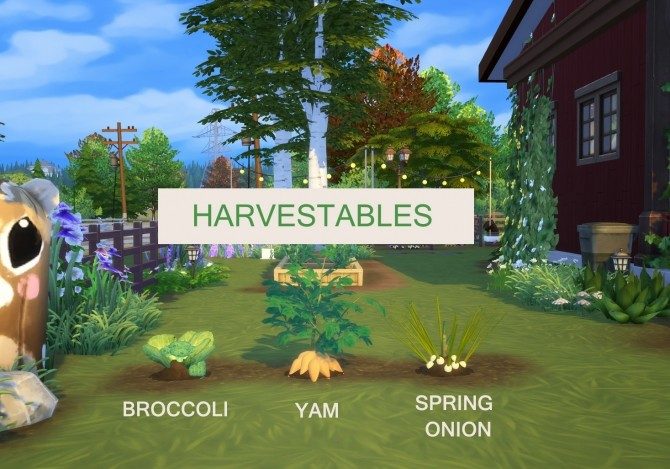 Harvestable Broccoli, Yam and Spring Onion by icemunmun at Mod The Sims image 282 670x469 Sims 4 Updates