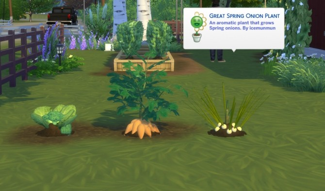 Sims 4 Harvestable Broccoli, Yam and Spring Onion by icemunmun at Mod The Sims
