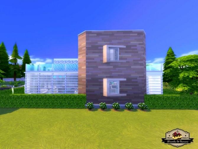 Sims 4 Bananas Vet Clinic (No CC) by mamba black at Mod The Sims