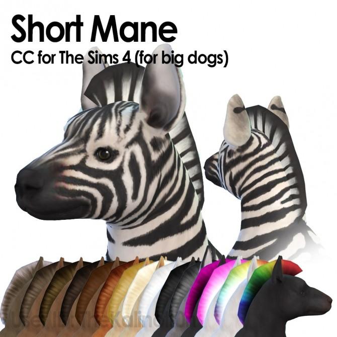 Short mane (big dogs) at Kalino image 5110 670x670 Sims 4 Updates